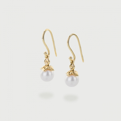 Freshwater Pearl Drop Earrings in 14K Gold-AlmaDiPietra